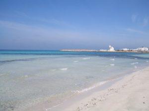 Il litorale sabbioso e sullo sfondo la caratteristica scacchiera della Torre San Giovanni