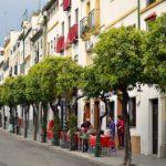 Andalucia, meta turistica 365 giorni all'anno