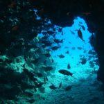 Le località più belle del Mar Rosso