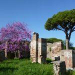 Le rovine di Ostia Antica